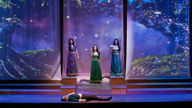 Production photographs of Opera Colorado's 2015 production of The Magic Flute by W.A. Mozart.